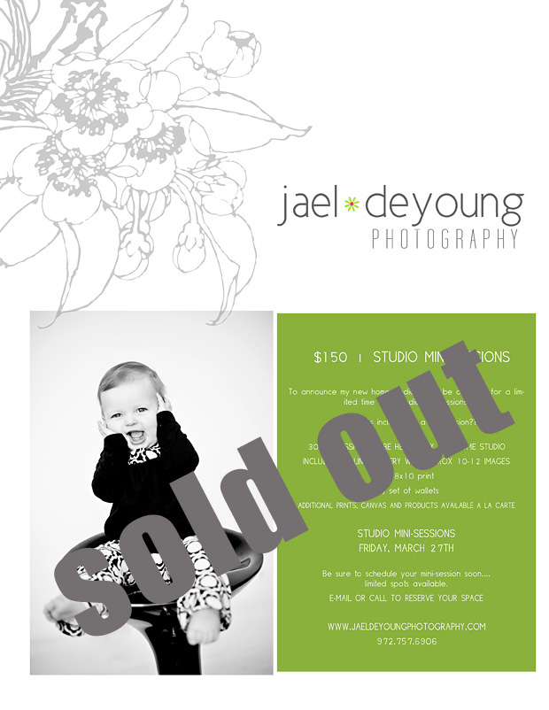 Sold out mini session invite for blog